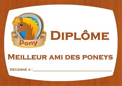 diplôme poney