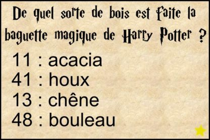 chasse au tresor harry potter