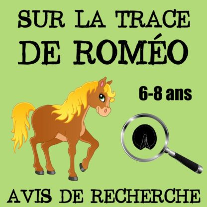 chasse poney 6 8 ans